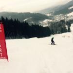 snowgate Dave